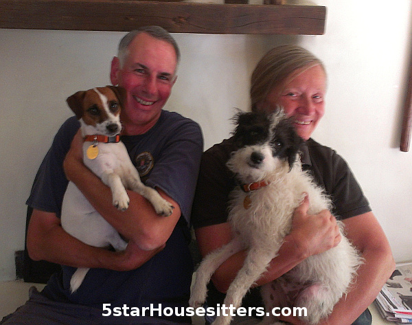 Long term house sitting, dog sitting and cat care with jack russell terriers