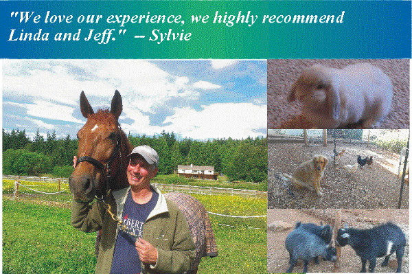 Housesitting and Petsitting, rabbits, pygmy goats, chickens and interacting with horses, too!