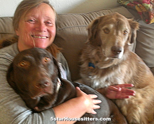 Extended stay pet care in San Diego with chocolate lab retriever and husky mix in southern California