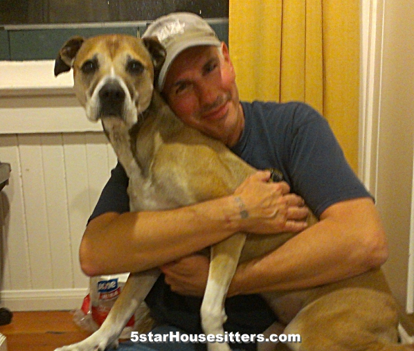 Extended stay pet care with a pit bull boxer mix in Southern California