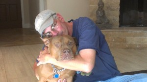 In home pet sitting as a dog boarding alternative for a pit bull in central Florida
