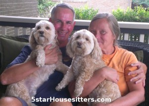 Housesitting and dog sitting two cockapoo brothers