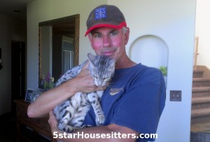 Kiki, the silver bengal, on cat care assignment in Durango